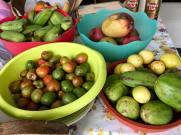 Fruits d la Passion- prunes- higos
