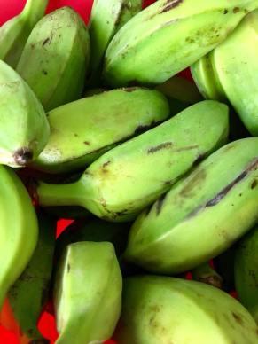 récoltes- fruits