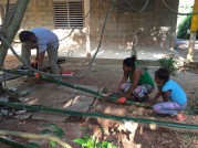 mesure bambous 1